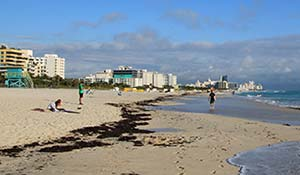 Stranden i Miami Beach
